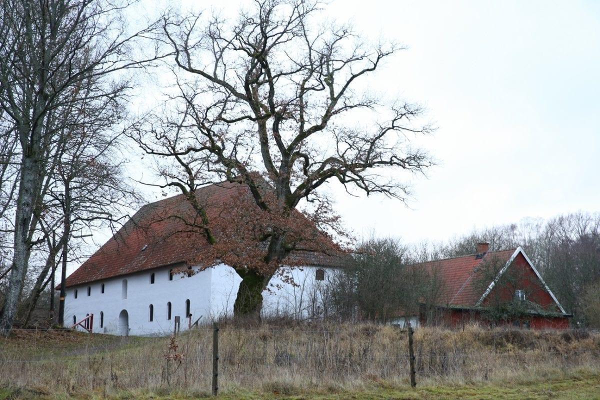 2018 12 08 36 österlen.se