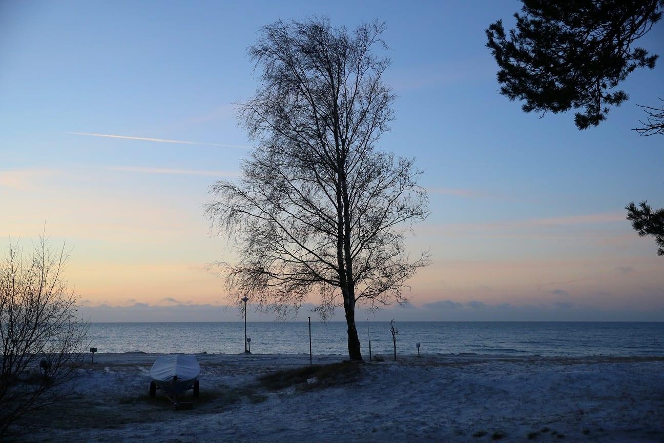 2019 01 19 nr6 46 österlen.se
