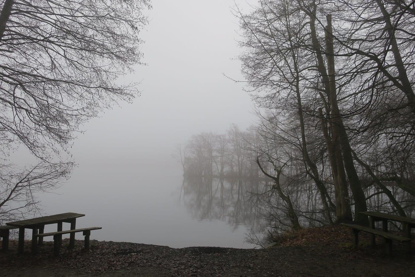 2019 02 18 009 österlen.se