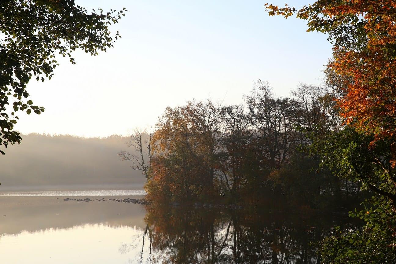 Autumn 8 österlen.se